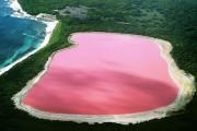 Чудо природы: в Австралии есть розовое озеро