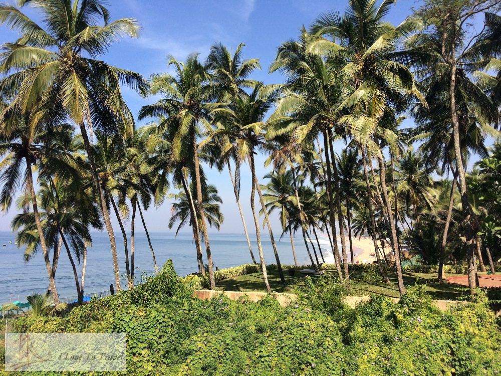 Индия: советы туристам