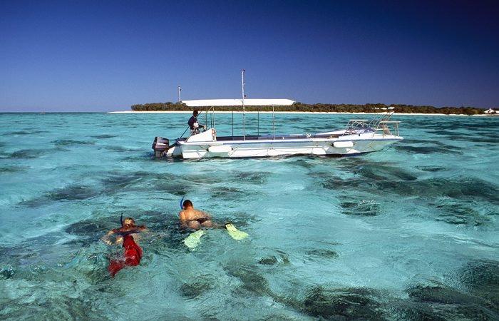Австралия приглашает на первую в мире подводную выставку
