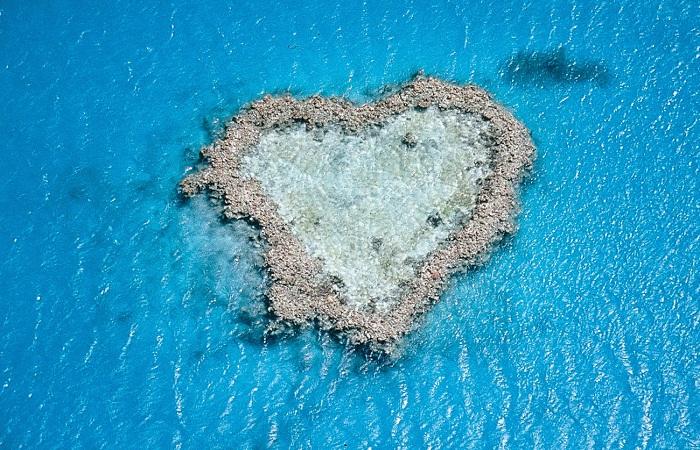 Риф в форме сердца